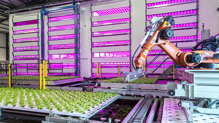 High tech plant factories